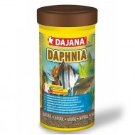Dajana Daphnia