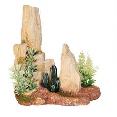Kameň s kaktusom S