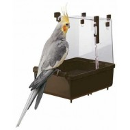 Kúpeľnička pre vtáky